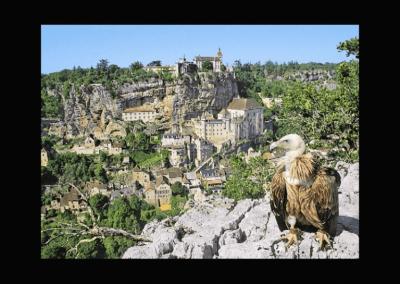 Le Rocher des Aigles à Rocamadour - Lot - Midi-Pyrénées